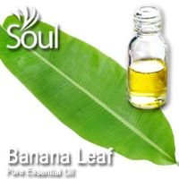 Pure Essential Oil Banana Leaf - 50ml