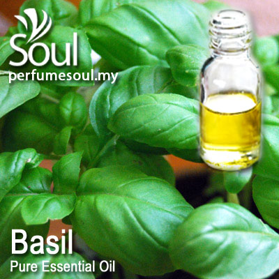 Pure Essential Oil Basil-Cinnamon Basil (Thai Basil) - 50ml