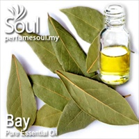 Pure Essential Oil Bay - 50ml