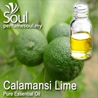 Pure Essential Oil Lime - Calamansi Lime - 50ml