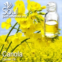 Virgin Carrier Oil Canola (Rapeseed) - 100ml