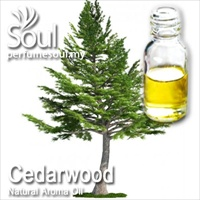 Natural Aroma Oil Cedar Wood - 10ml