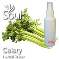 Herbal Water Celery - 120ml