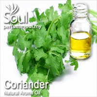 Natural Aroma Oil Coriander - 50ml