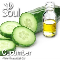 Pure Essential Oil Cucumber - 50ml