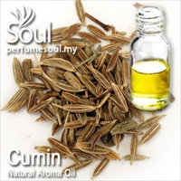 Natural Aroma Oil Cumin - 50ml