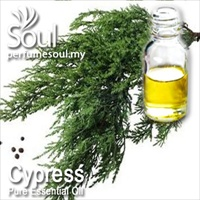Pure Essential Oil Cypress - 10ml