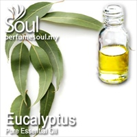 Pure Essential Oil Eucalyptus - 50ml