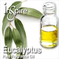 Fragrance Eucalyptus - 10ml