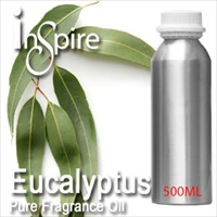 Pure Essential Oil Eucalyptus - 500ml