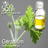 Pure Essential Oil Geranium (Lemon Geranium) - 50ml