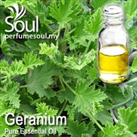 Pure Essential Oil Geranium (Lemon Geranium - 10ml