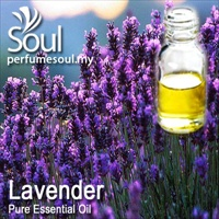 Pure Essential Oil Lavender - 10ml