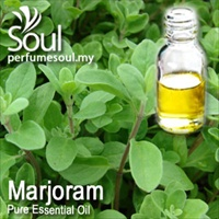 Pure Essential Oil Marjoram - 50ml