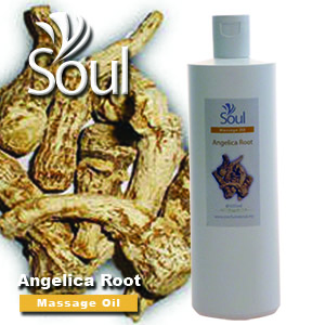 Massage Oil Angelica Root - 500ml