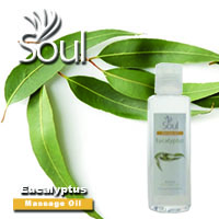 Massage Oil Eucalyptus - 200ml
