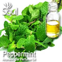 Peppermint Aromatic Car Perfume Oil - 50ml