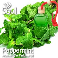 Peppermint Aromatic Car Perfume Oil - 8ml