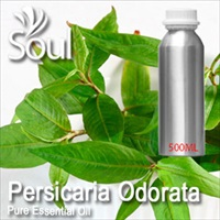 Pure Essential Oil Persicaria Odorata - 500ml