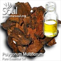 Pure Essential Oil Polygonum Multiflorum - 10ml