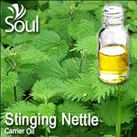 Virgin Carrier Oil Stinging Nettle - 100ml