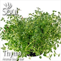 Aroma Soap Bar Thyme - 1kg