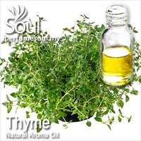 Pure Essential Oil Thyme (Common Thyme) - 10ml