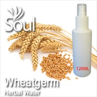 Herbal Water Wheatgerm - 120ml
