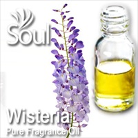 Fragrance Wisteria - 10ml