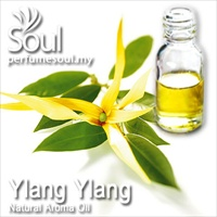Pure Essential Oil Ylang Ylang - 10ml